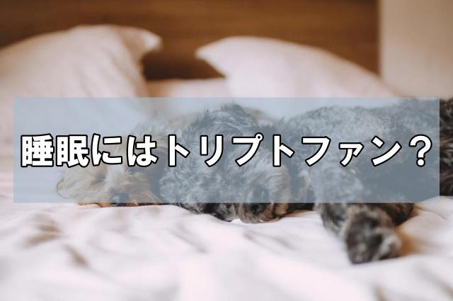 トリプトファンとは?摂取量とタイミングで睡眠の質が変わる!